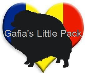 Gafia's Little Pack.jpg